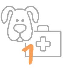 La trousse de secours pour chien